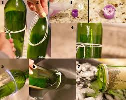 9 ideas de plantas en botellas de vidrio 9