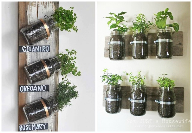 9 ideas de plantas en botellas de vidrio