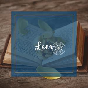 7 Cosas para liberar tu mente Leer
