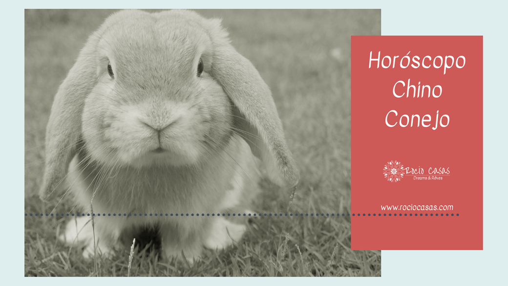 Horóscopo Chino Conejo